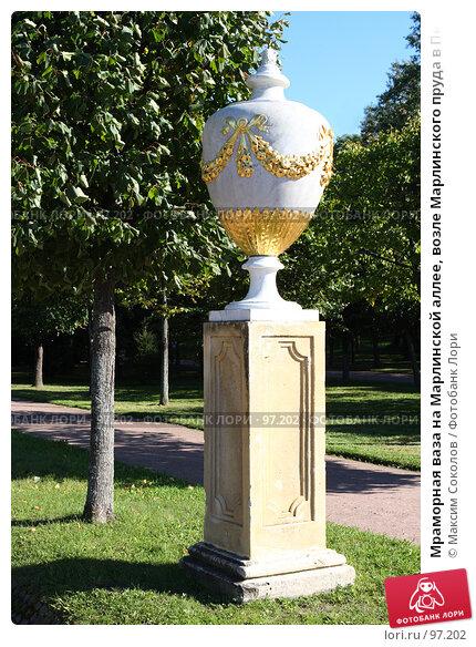 Мраморная ваза на Марлинской аллее, возле Марлинского пруда в Петергофе. Санкт-Петербург, фото № 97202, снято 5 сентября 2007 г. (c) Максим Соколов / Фотобанк Лори