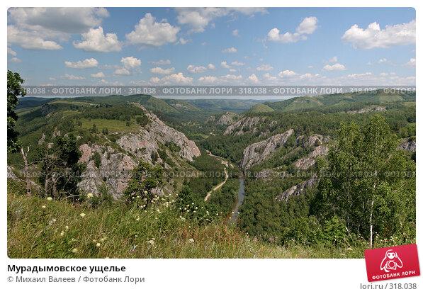 Мурадымовское ущелье, фото № 318038, снято 30 июня 2007 г. (c) Михаил Валеев / Фотобанк Лори