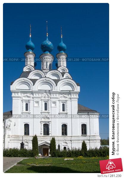 Купить «Муром. Благовещенский собор», фото № 281230, снято 2 мая 2008 г. (c) Яков Филимонов / Фотобанк Лори