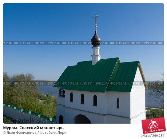 Купить «Муром. Спасский монастырь», фото № 299234, снято 2 мая 2008 г. (c) Яков Филимонов / Фотобанк Лори