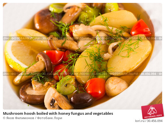 Mushroom hoosh boiled with honey fungus and vegetables. Стоковое фото, фотограф Яков Филимонов / Фотобанк Лори