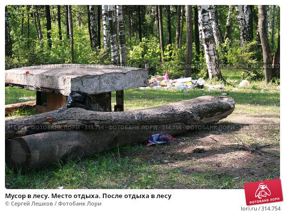 Купить «Мусор в лесу. Место отдыха. После отдыха в лесу», фото № 314754, снято 18 мая 2008 г. (c) Сергей Лешков / Фотобанк Лори
