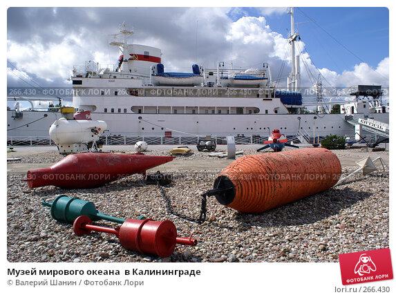 Купить «Музей мирового океана  в Калининграде», фото № 266430, снято 31 июля 2007 г. (c) Валерий Шанин / Фотобанк Лори