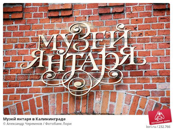 Купить «Музей янтаря в Калининграде», фото № 232766, снято 2 сентября 2007 г. (c) Александр Черемнов / Фотобанк Лори