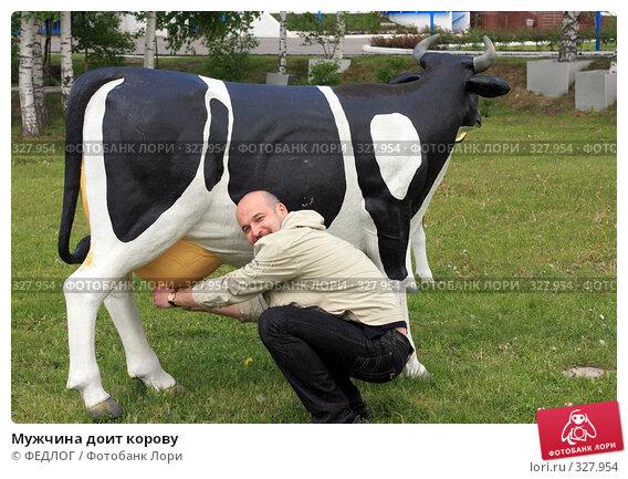 Мужчина доит корову, фото № 327954, снято 18 мая 2008 г. (c) ФЕДЛОГ.РФ / Фотобанк Лори