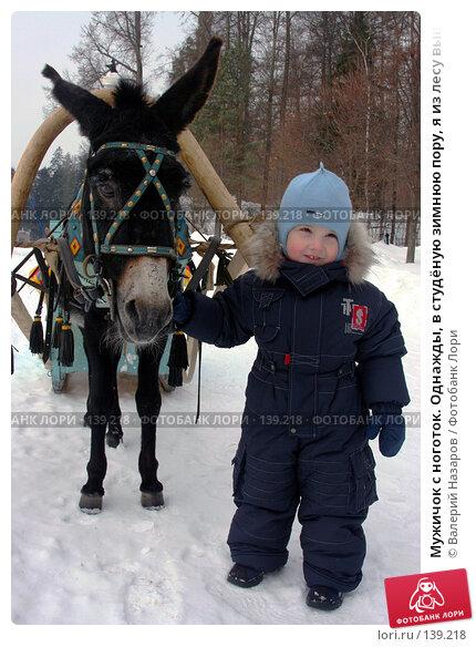 Мужичок с ноготок. Однажды, в студёную зимнюю пору, я из лесу вышел., фото № 139218, снято 11 марта 2006 г. (c) Валерий Назаров / Фотобанк Лори