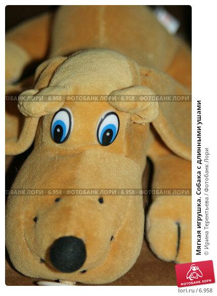 Мягкая игрушка. Собака с длинными ушами, эксклюзивное фото № 6958, снято 21 января 2006 г. (c) Ирина Терентьева / Фотобанк Лори