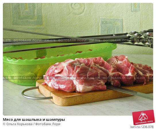 Мясо для шашлыка и шампуры, фото № 236078, снято 30 апреля 2017 г. (c) Ольга Хорькова / Фотобанк Лори