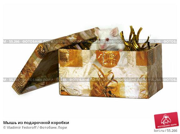 Мышь из подарочной коробки, фото № 55266, снято 21 апреля 2007 г. (c) Vladimir Fedoroff / Фотобанк Лори