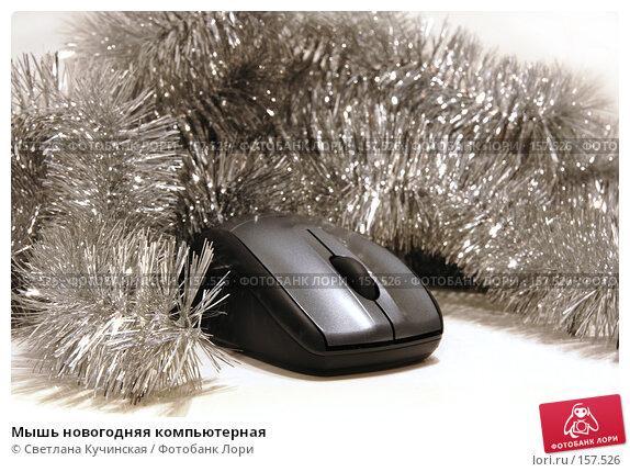 Мышь новогодняя компьютерная, фото № 157526, снято 22 декабря 2007 г. (c) Светлана Кучинская / Фотобанк Лори