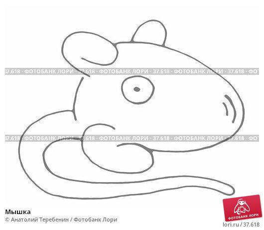 Мышка, иллюстрация № 37618 (c) Анатолий Теребенин / Фотобанк Лори