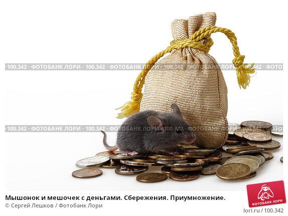 Купить «Мышонок и мешочек с деньгами. Сбережения. Приумножение.», фото № 100342, снято 23 сентября 2007 г. (c) Сергей Лешков / Фотобанк Лори
