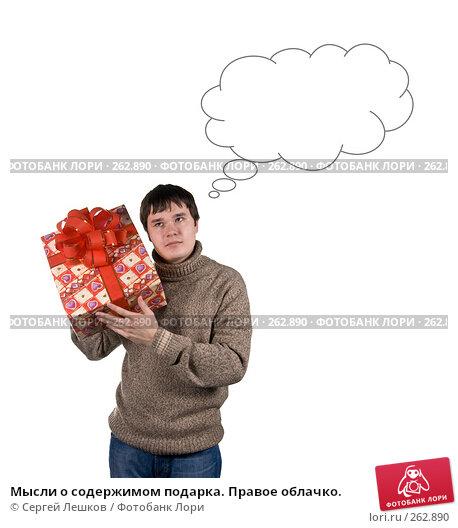 Мысли о содержимом подарка. Правое облачко., фото № 262890, снято 25 ноября 2007 г. (c) Сергей Лешков / Фотобанк Лори