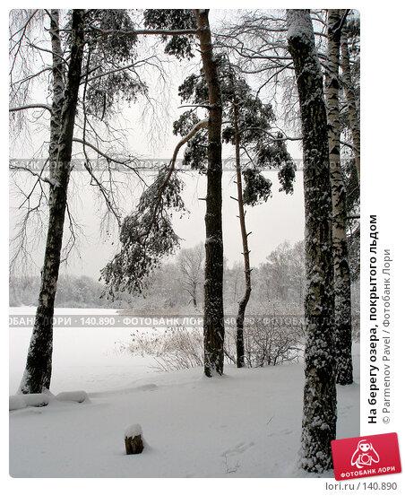 На берегу озера, покрытого льдом, фото № 140890, снято 15 февраля 2007 г. (c) Parmenov Pavel / Фотобанк Лори