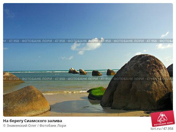 На берегу Сиамского залива, фото № 47958, снято 22 февраля 2006 г. (c) Знаменский Олег / Фотобанк Лори