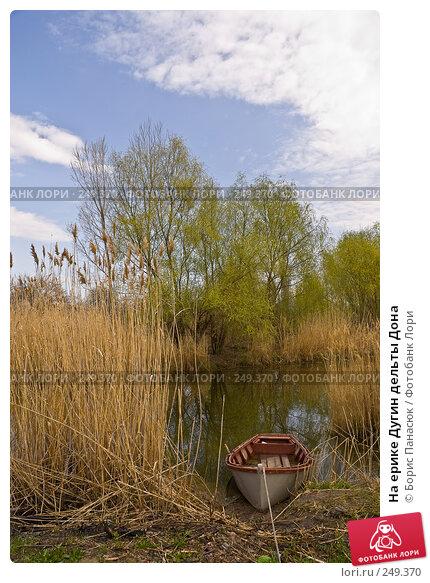 На ерике Дугин дельты Дона, фото № 249370, снято 11 апреля 2008 г. (c) Борис Панасюк / Фотобанк Лори
