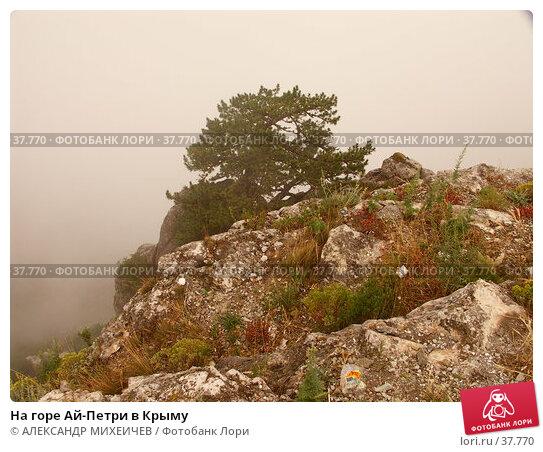 На горе Ай-Петри в Крыму, фото № 37770, снято 17 июля 2006 г. (c) АЛЕКСАНДР МИХЕИЧЕВ / Фотобанк Лори