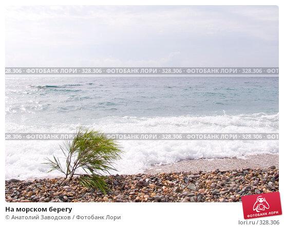 Купить «На морском берегу», фото № 328306, снято 28 сентября 2006 г. (c) Анатолий Заводсков / Фотобанк Лори