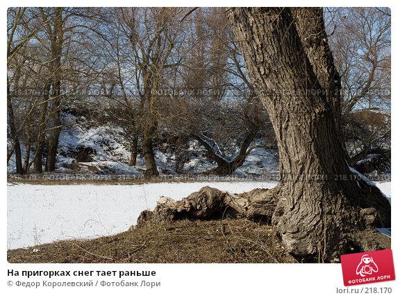На пригорках снег тает раньше, фото № 218170, снято 16 февраля 2008 г. (c) Федор Королевский / Фотобанк Лори