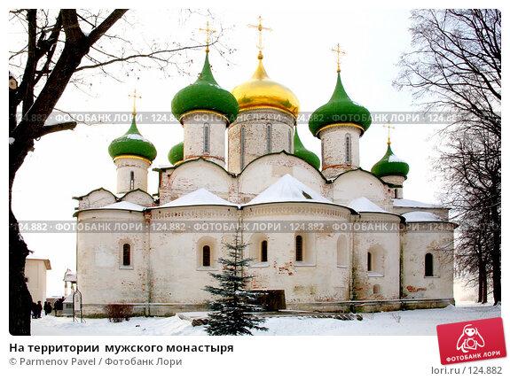 Купить «На территории  мужского монастыря», фото № 124882, снято 18 ноября 2007 г. (c) Parmenov Pavel / Фотобанк Лори