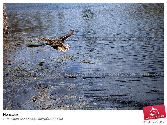 На взлет, фото № 29342, снято 18 марта 2007 г. (c) Михаил Баевский / Фотобанк Лори