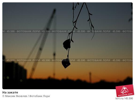 На закате, фото № 45590, снято 2 октября 2006 г. (c) Максим Яковлев / Фотобанк Лори
