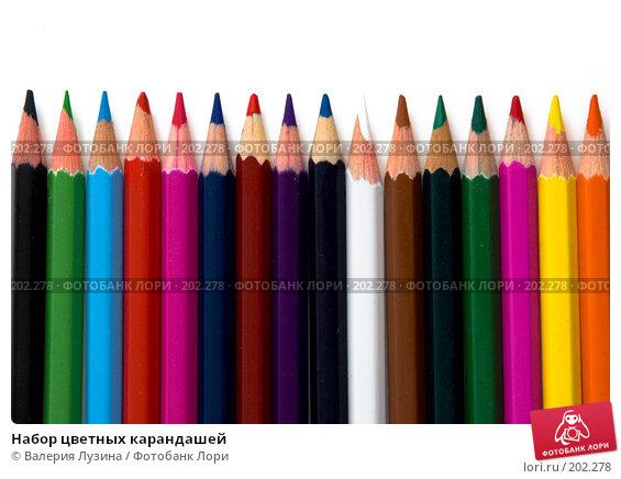 Набор цветных карандашей, фото № 202278, снято 19 декабря 2007 г. (c) Валерия Потапова / Фотобанк Лори
