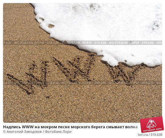 Купить «Надпись WWW на мокром песке морского берега смывает волна», фото № 319630, снято 19 сентября 2007 г. (c) Анатолий Заводсков / Фотобанк Лори
