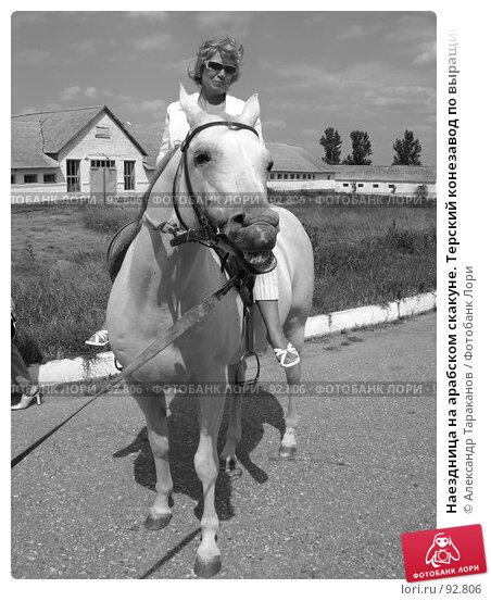 Купить «Наездница на арабском скакуне. Терский конезавод по выращиванию и реализации племенных лошадей. Поселок Новотерский Ставропольского края.», эксклюзивное фото № 92806, снято 21 июня 2006 г. (c) Александр Тараканов / Фотобанк Лори