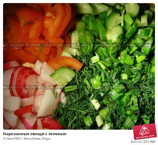Купить «Нарезанные овощи с зеленью», эксклюзивное фото № 231966, снято 22 марта 2008 г. (c) lana1501 / Фотобанк Лори