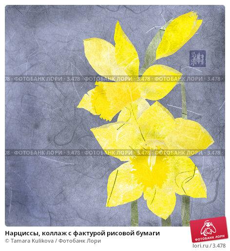 Нарциссы, коллаж с фактурой рисовой бумаги, иллюстрация № 3478 (c) Tamara Kulikova / Фотобанк Лори