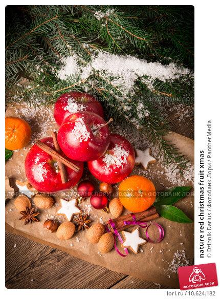 nature red christmas fruit xmas. Стоковое фото, фотограф Dzinnik Darius / PantherMedia / Фотобанк Лори