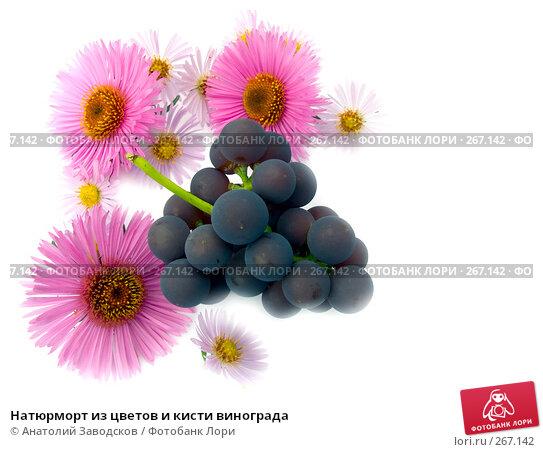 Натюрморт из цветов и кисти винограда, фото № 267142, снято 1 октября 2006 г. (c) Анатолий Заводсков / Фотобанк Лори