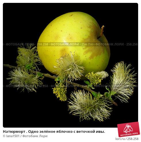 Купить «Натюрморт . Одно зелёное яблочко с веточкой ивы.», эксклюзивное фото № 258258, снято 16 апреля 2008 г. (c) lana1501 / Фотобанк Лори