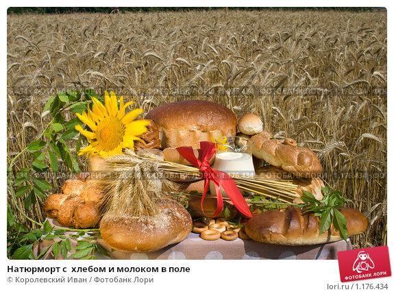 Купить «Натюрморт с  хлебом и молоком в поле», фото № 1176434, снято 7 июля 2009 г. (c) Королевский Иван / Фотобанк Лори