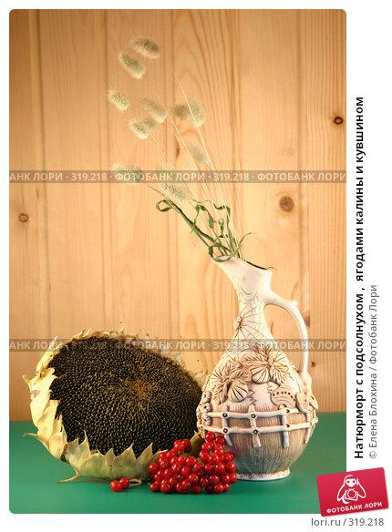 Натюрморт с подсолнухом ,  ягодами калины и кувшином, фото № 319218, снято 4 сентября 2007 г. (c) Елена Блохина / Фотобанк Лори