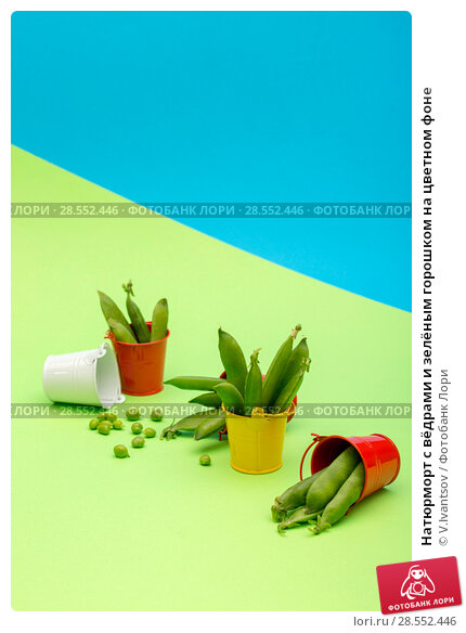 Купить «Натюрморт с вёдрами и зелёным горошком на цветном фоне», фото № 28552446, снято 4 июня 2018 г. (c) V.Ivantsov / Фотобанк Лори