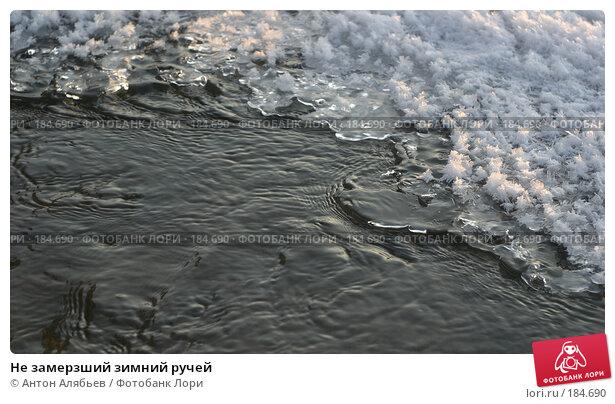 Купить «Не замерзший зимний ручей», фото № 184690, снято 8 января 2008 г. (c) Антон Алябьев / Фотобанк Лори