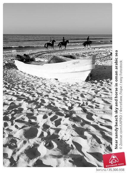 Near sandy beach sky and horse in oman arabic sea. Стоковое фото, фотограф Zoonar.com/LKPRO / easy Fotostock / Фотобанк Лори
