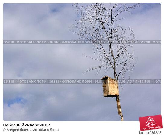 Небесный скворечник, фото № 36818, снято 10 июля 2005 г. (c) Андрей Яшин / Фотобанк Лори