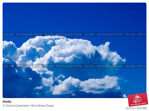 Небо, фото № 323550, снято 22 июля 2007 г. (c) Ольга Сапегина / Фотобанк Лори