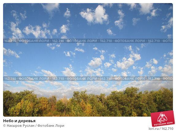 Небо и деревья, фото № 162710, снято 16 сентября 2007 г. (c) Насыров Руслан / Фотобанк Лори