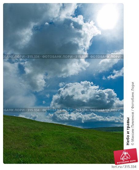 Небо и травы, фото № 315334, снято 15 мая 2008 г. (c) Максим Пименов / Фотобанк Лори