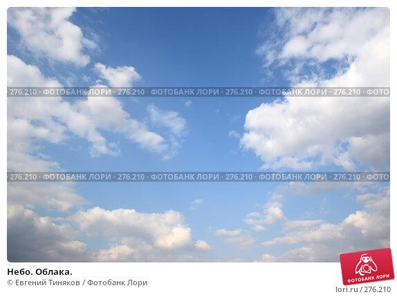 Небо. Облака., фото № 276210, снято 6 апреля 2008 г. (c) Евгений Тиняков / Фотобанк Лори