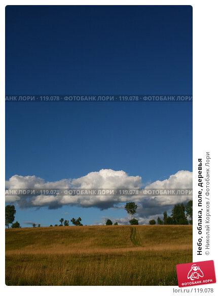 Небо, облака, поле, деревья, фото № 119078, снято 16 июня 2007 г. (c) Николай Коржов / Фотобанк Лори