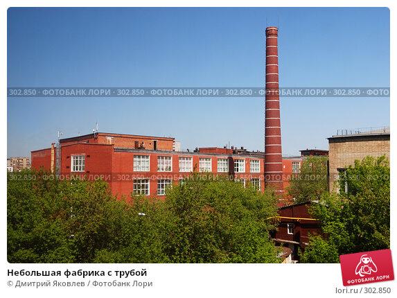 Небольшая фабрика с трубой, фото № 302850, снято 8 мая 2008 г. (c) Дмитрий Яковлев / Фотобанк Лори