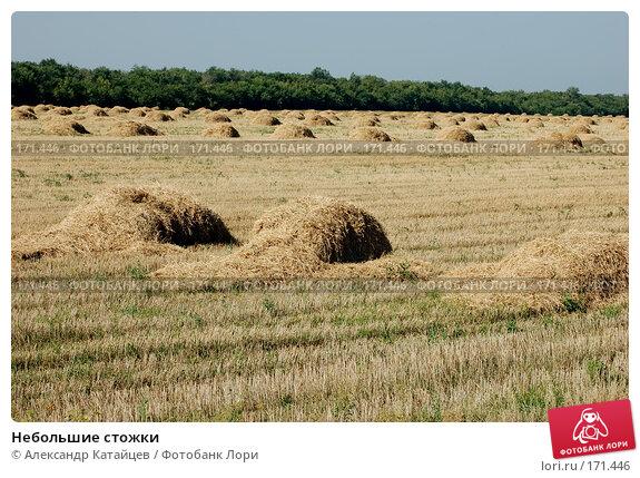 Небольшие стожки, фото № 171446, снято 18 августа 2007 г. (c) Александр Катайцев / Фотобанк Лори