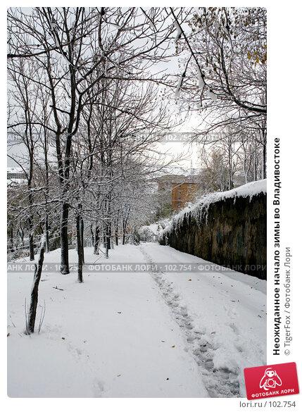 Неожиданное начало зимы во Владивостоке, фото № 102754, снято 29 марта 2017 г. (c) TigerFox / Фотобанк Лори