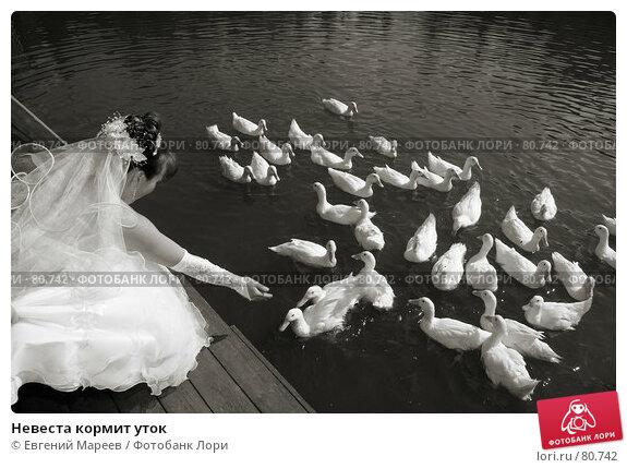 Невеста кормит уток, фото № 80742, снято 28 июня 2007 г. (c) Евгений Мареев / Фотобанк Лори