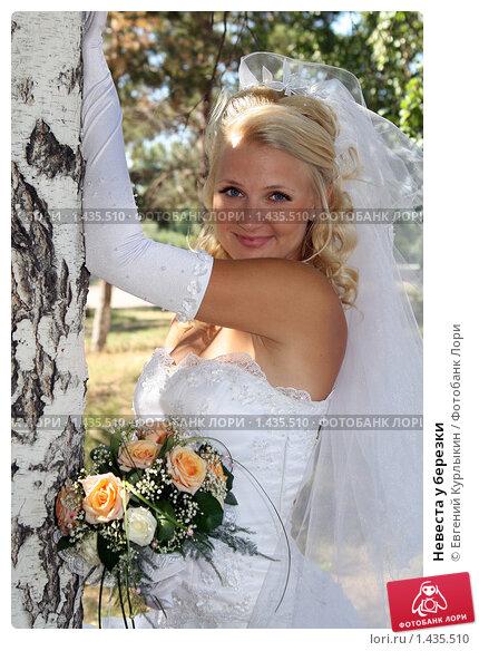 Невеста у березки. Стоковое фото, фотограф Евгений Курлыкин / Фотобанк Лори